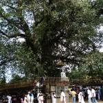 Kalaniya Temple